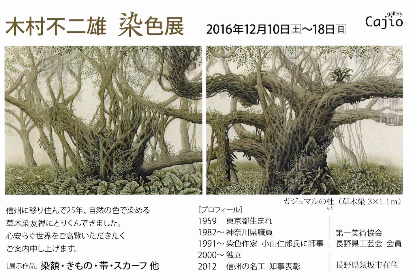 ex2016-kimura-detail